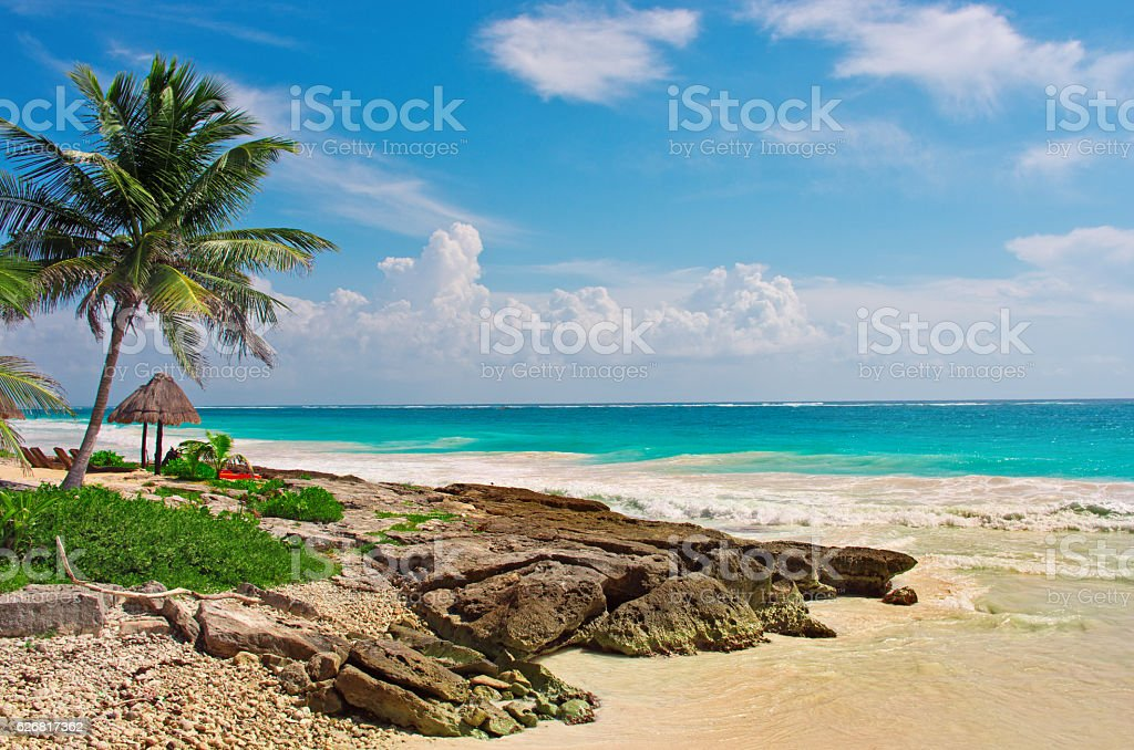 Tropical beach in caribbean sea, Yucatan. Mexico. stock photo