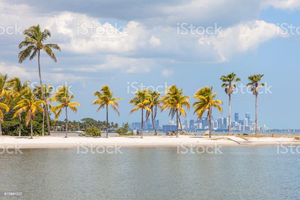 Tropical beach in Coral Gables, Miami stock photo