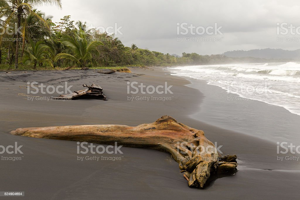 Tropical Beach In Costa Rica On The Carribean stock photo