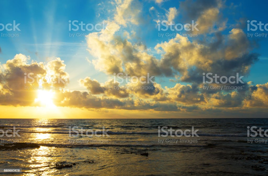 tropical beach in Maldives royalty-free 스톡 사진