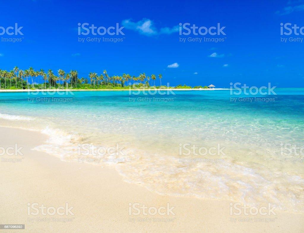 tropical beach in Maldives Lizenzfreies stock-foto
