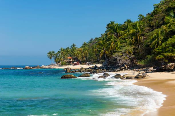 Tropical beach in Pizota near Puerto Vallarta, Mexico stock photo