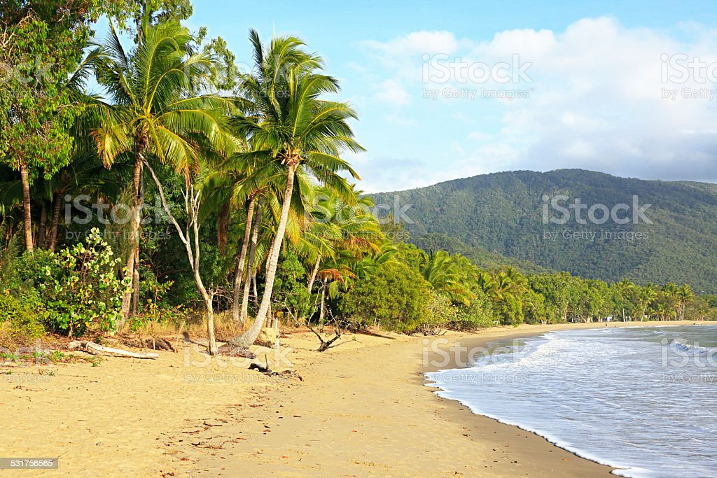 Tropical beach in summer with palm trees, ocean and hills stock photo