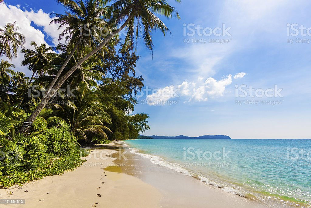 tropical beach in Thailand. stock photo