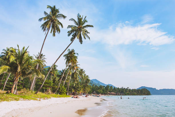 tropical beach in Thailand tropical beach in Thailand on Koh Chang island koh chang stock pictures, royalty-free photos & images