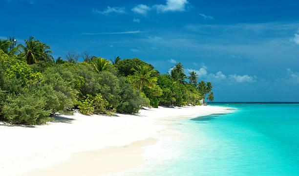 tropischer Strand auf den Malediven stock photo