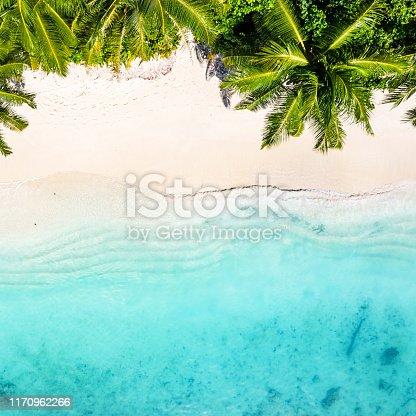 Tropical Beach in the Ocean, Maldives