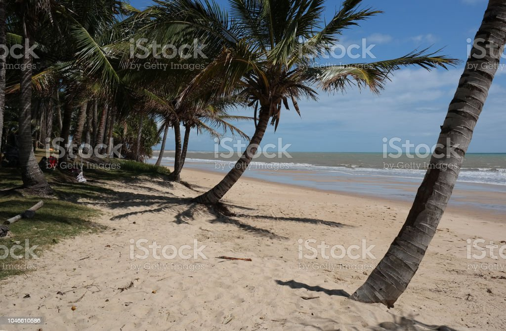 Tropical beach landscape stock photo