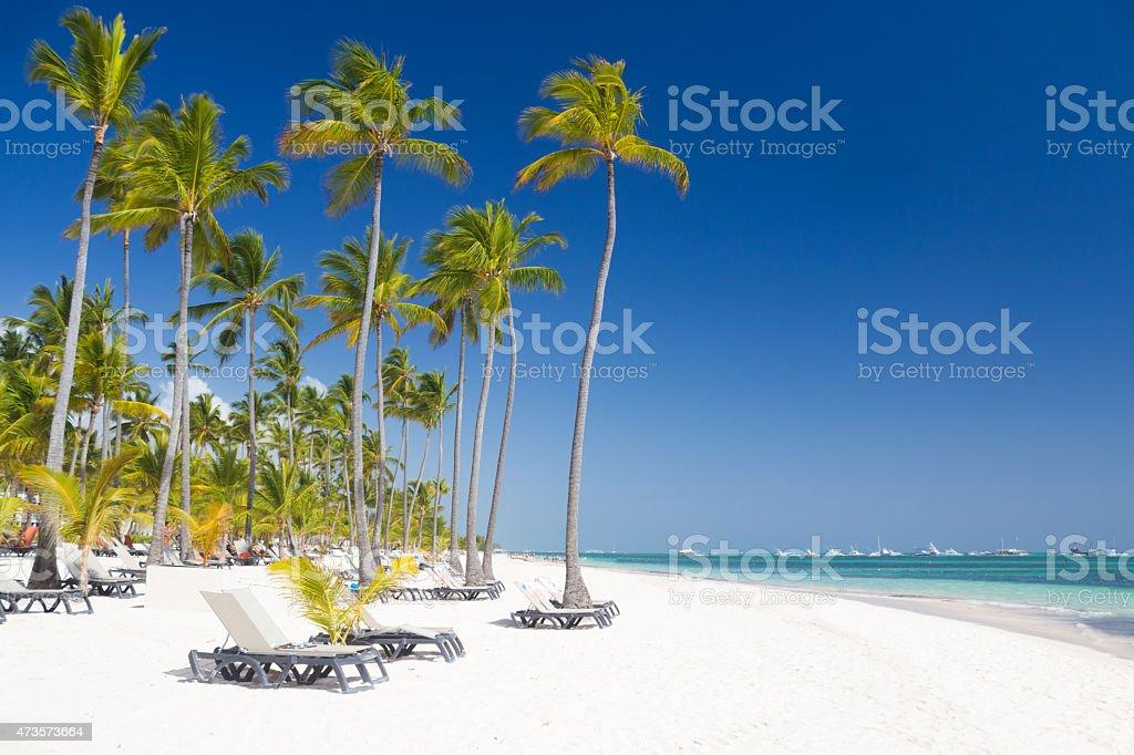 Tropical beach like a paradise on earth stock photo