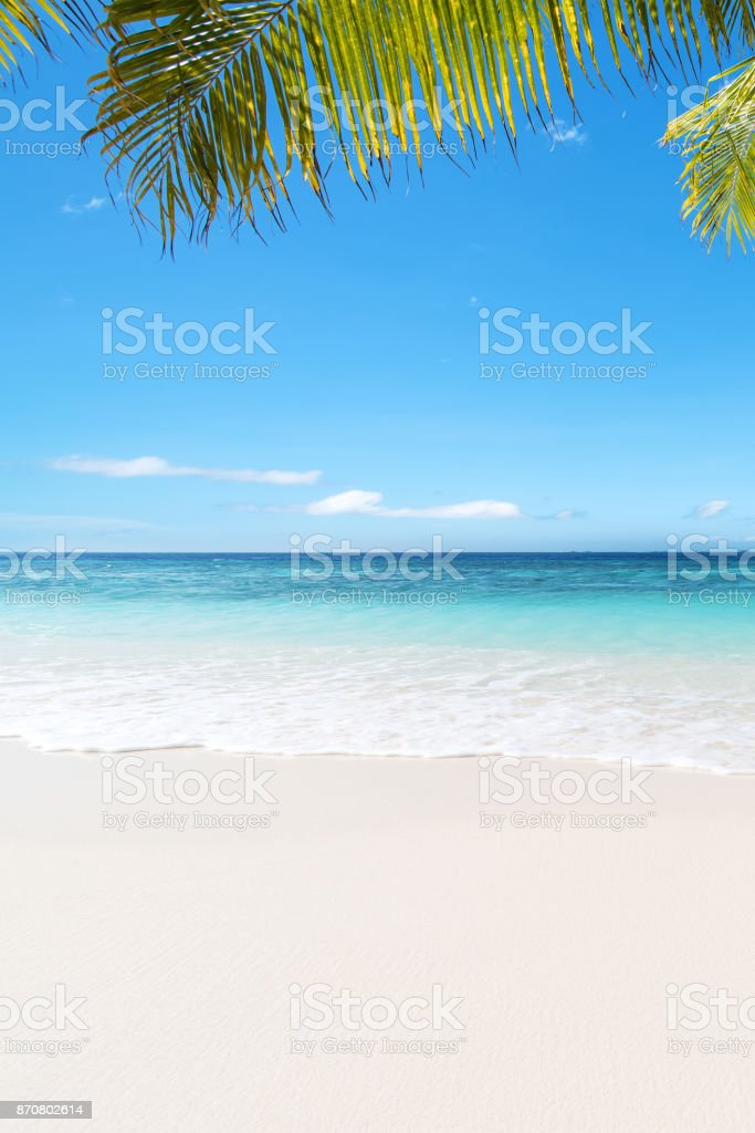 Tropical beach of Maldives stock photo