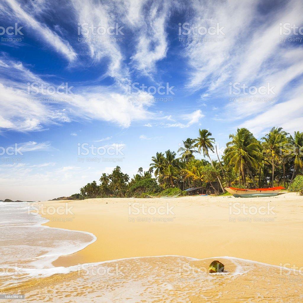 Tropical Beach of Sri Lanka stock photo