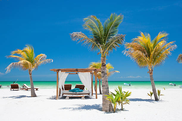 Tropical beach on a clear day with a private cabana stock photo