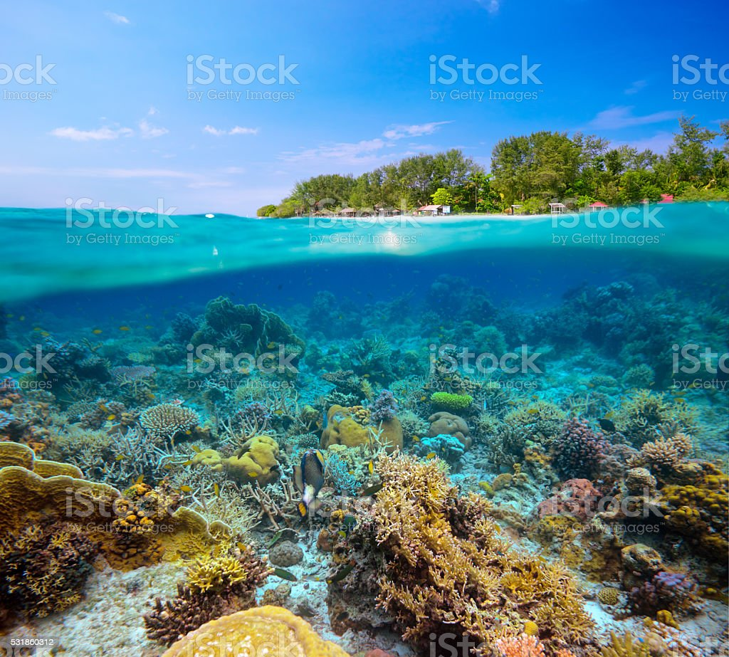 tropical beach on island Meno,Indonesia under and above water. stock photo