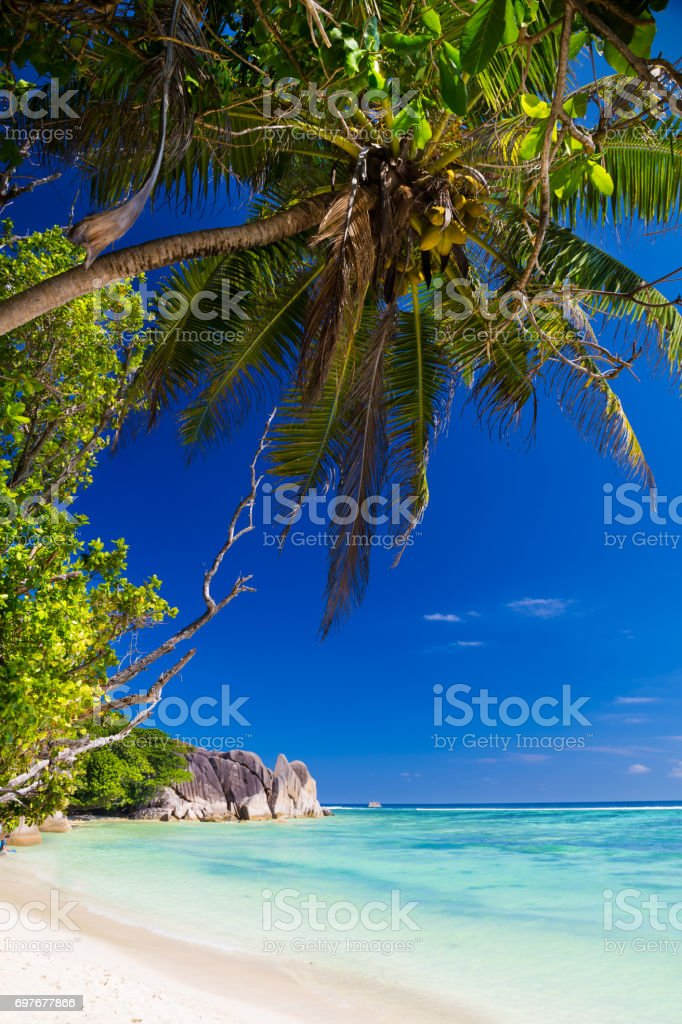 Tropical beach on Seychelles stock photo