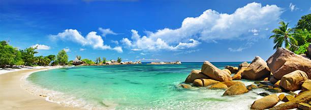 panorama der tropischen strand - panorama stock-fotos und bilder