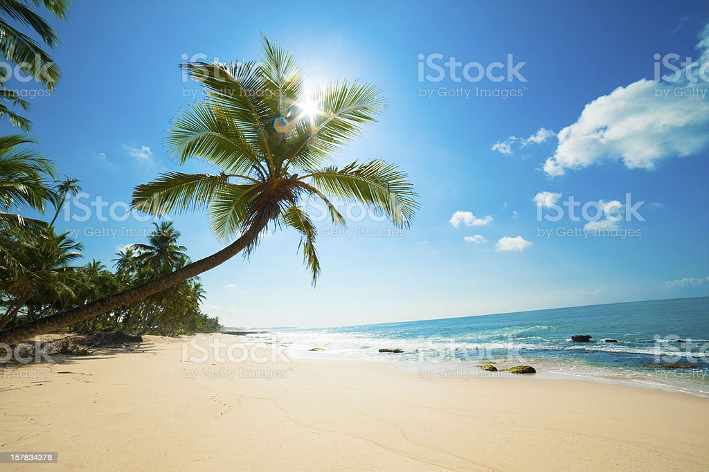 Tropical beach​​​ foto