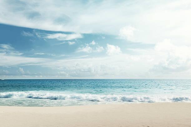 Tropical beach picture id465102794?b=1&k=6&m=465102794&s=612x612&w=0&h=scl5ybelmcttwcuhbcbwuulmmqvlzgmhkf2rzetuypo=