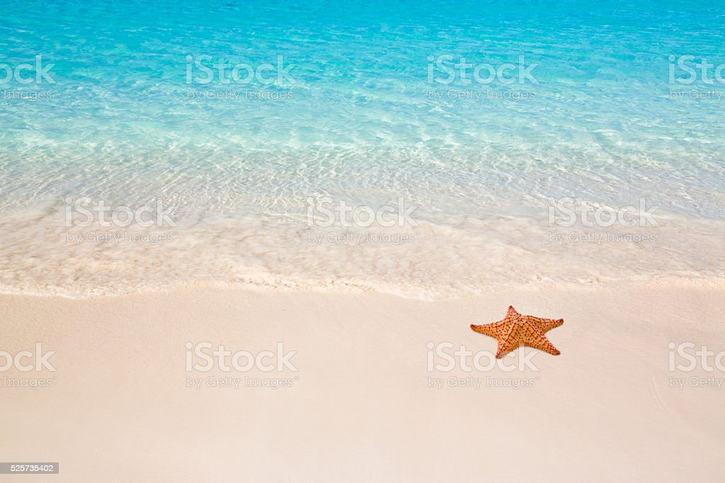 Playa Tropical - foto de stock
