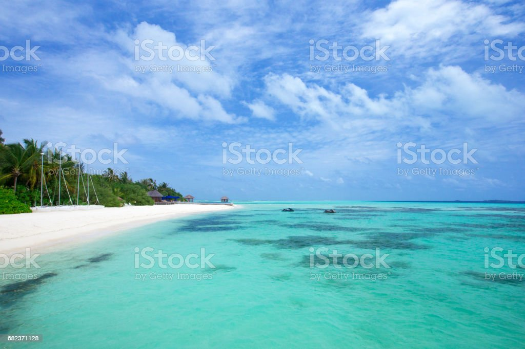 tropical beach zbiór zdjęć royalty-free