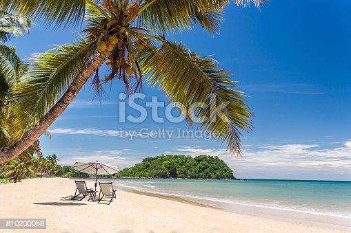istock Tropical beach 810200058