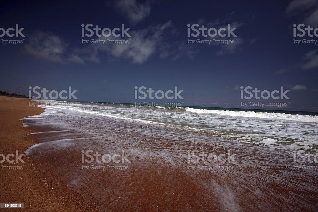 tropical beach royalty free stockfoto