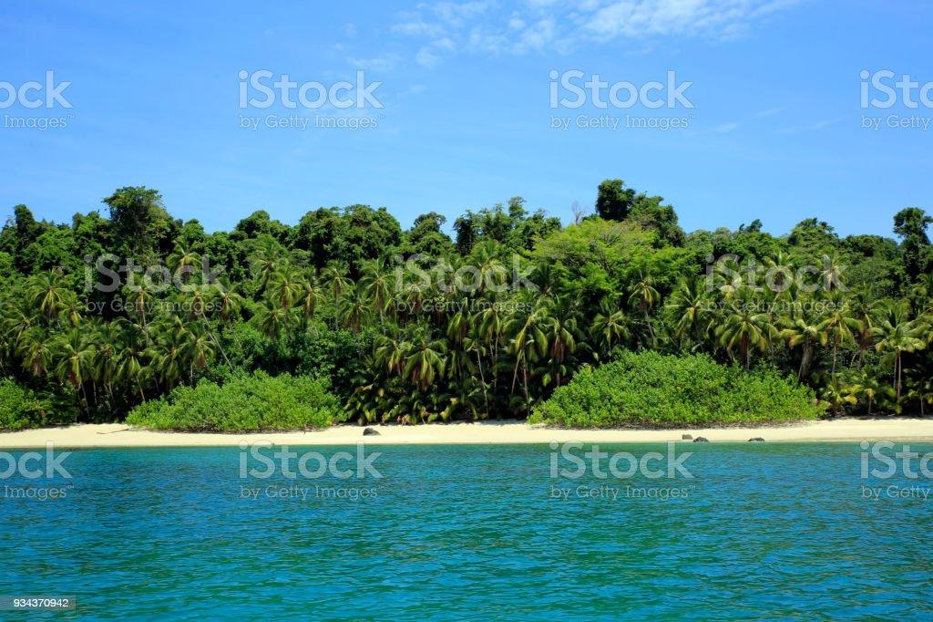 Tropical Beach bildbanksfoto