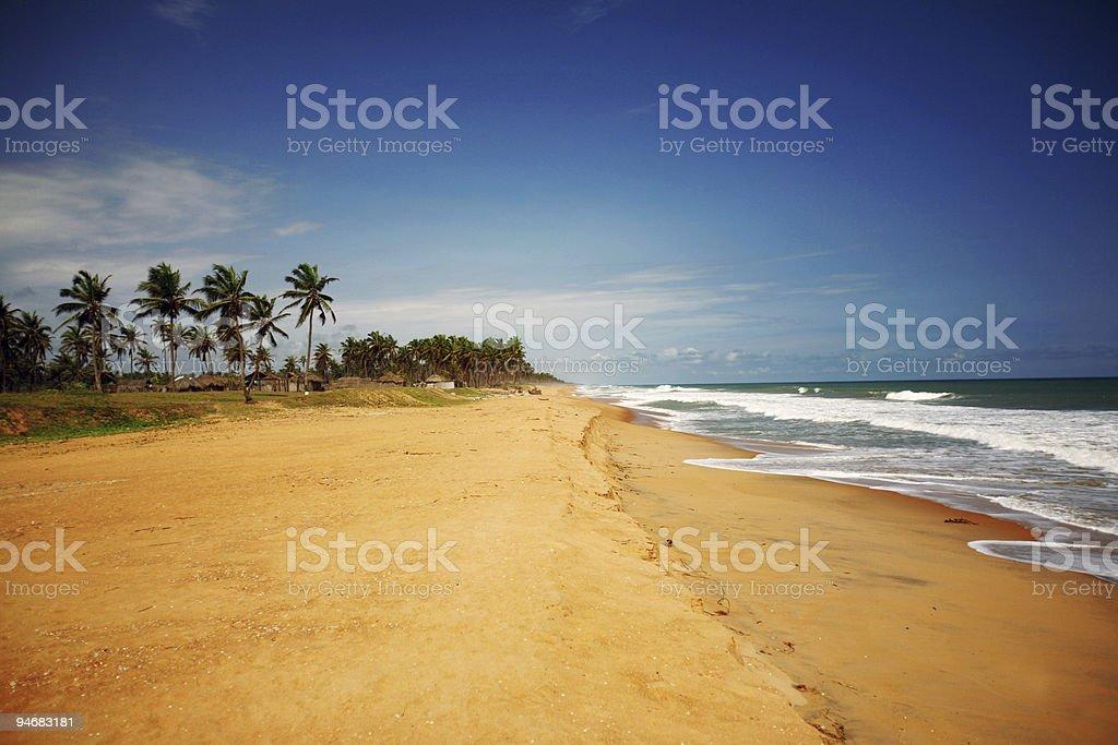 Praia tropical - foto de acervo