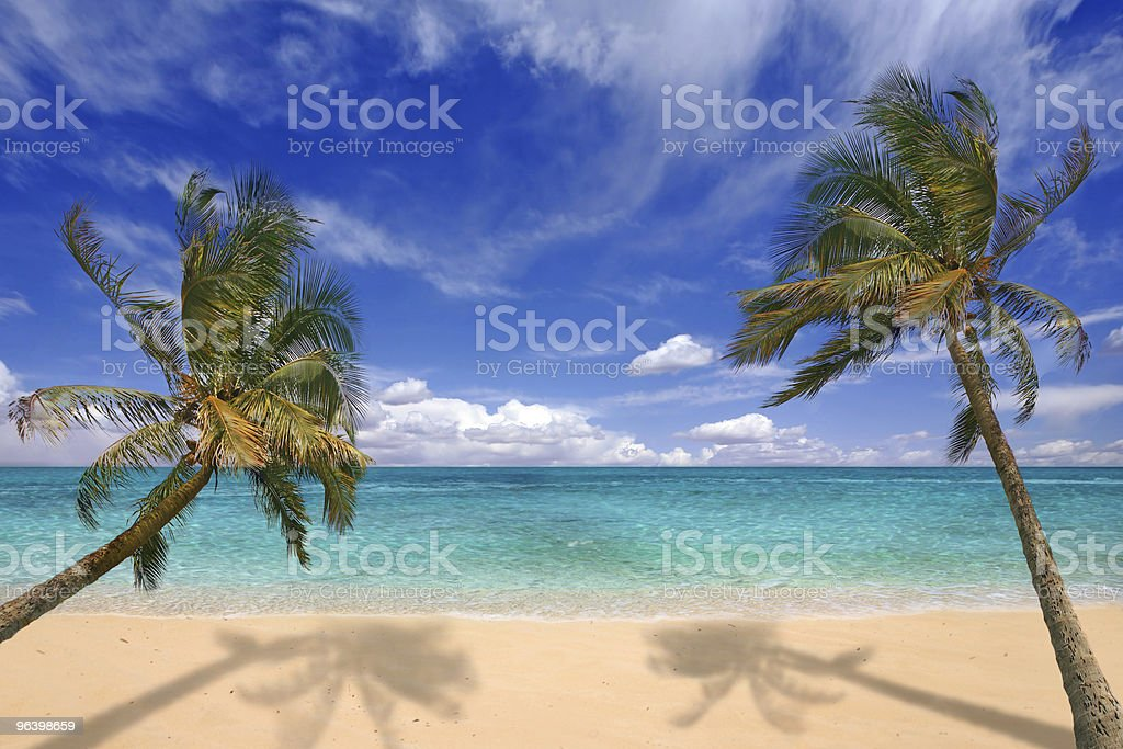 Tropical Beach - Royalty-free Beach Stock Photo