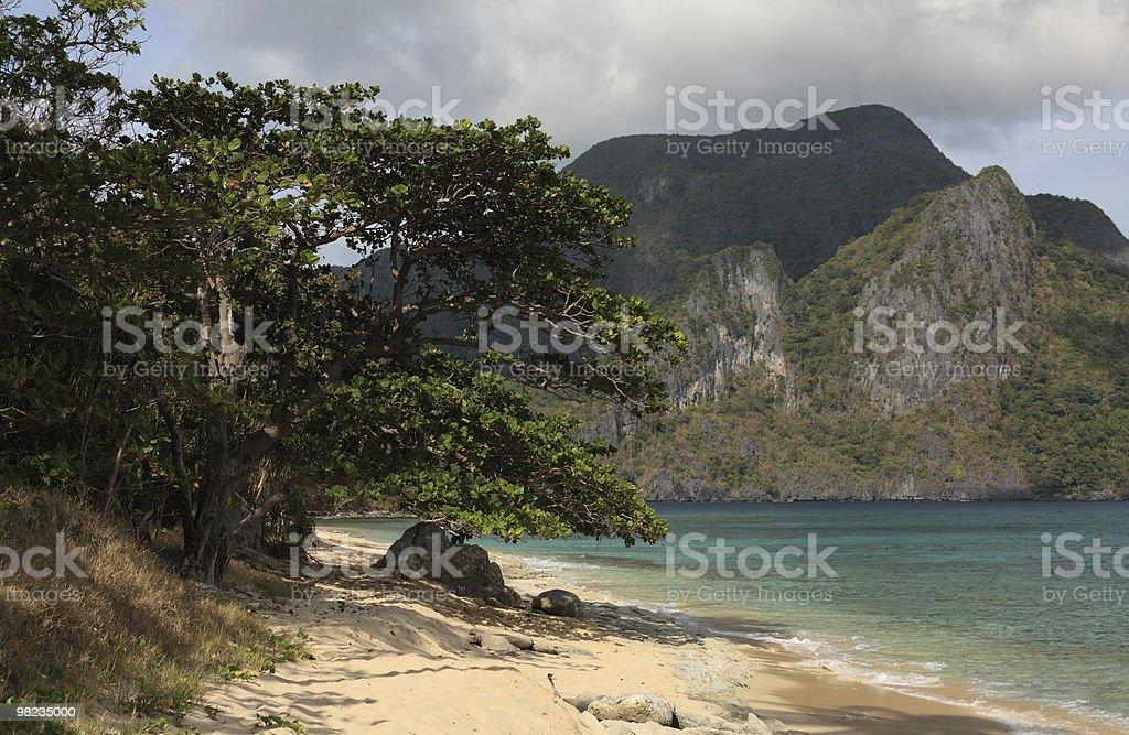 열대 해변 royalty-free 스톡 사진