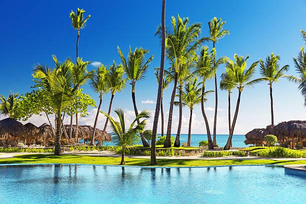 tropical beach resort with lounge chairs and umbrellas - golf sommar skugga bildbanksfoton och bilder