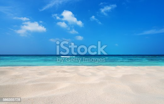 Tropical beach sand dune background