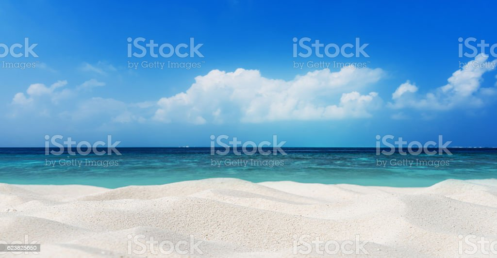 Tropical beach sand dune stock photo