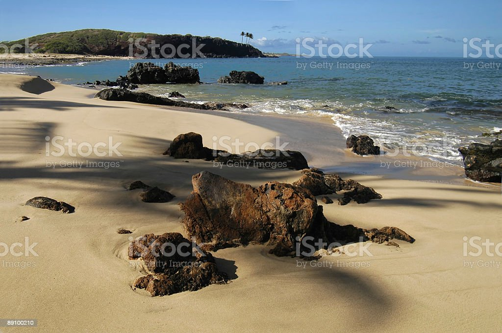 Tropical Beach Scene royalty-free stock photo