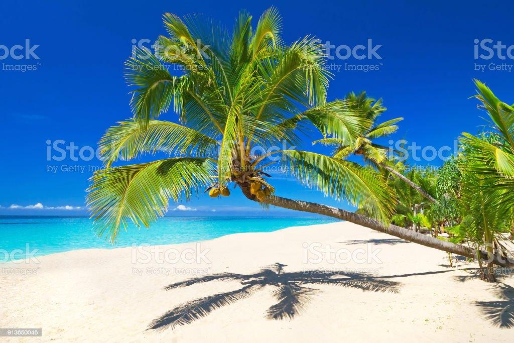 Tropical beach scenery at Andaman Sea – zdjęcie