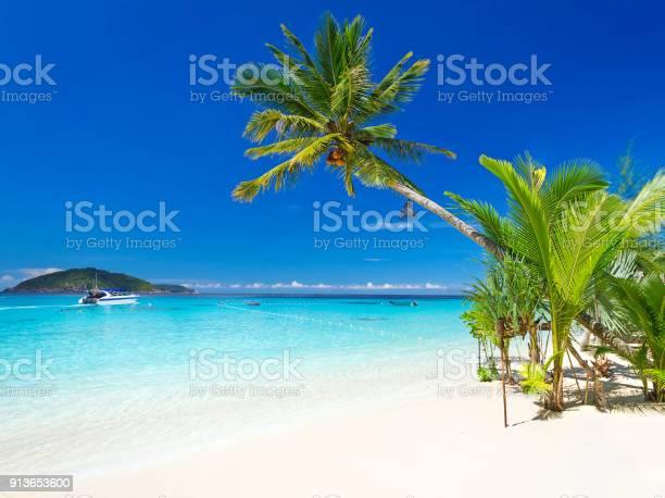 Tropical beach scenery picture id913653600?b=1&k=6&m=913653600&s=612x612&h=tqnufi4lirdphq9yxkryn fvc6fgxgc a5fjfz ypcu=