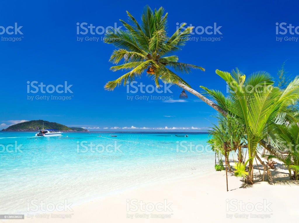 Tropical beach scenery – zdjęcie