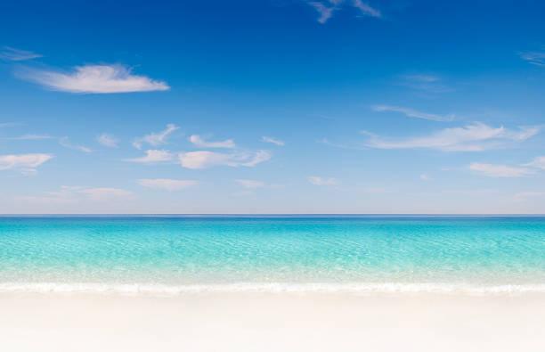 tropical beach seamless tile - groothoek stockfoto's en -beelden