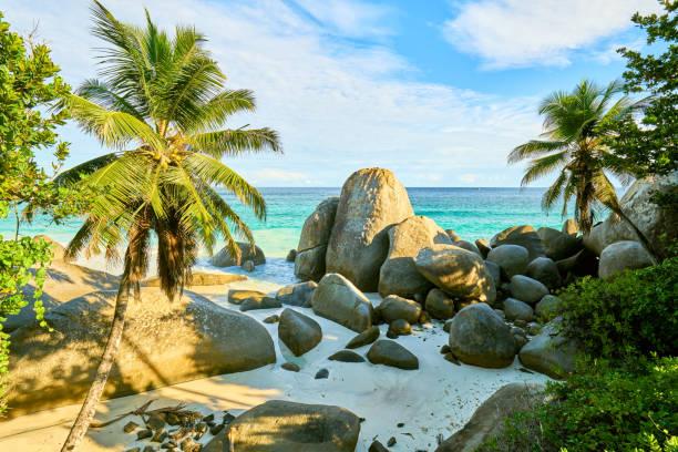 """열 대 해변 세이셸 이라는 """"carana 비치"""", machabee, 마헤, 세이셸 - 마헤 섬 뉴스 사진 이미지"""