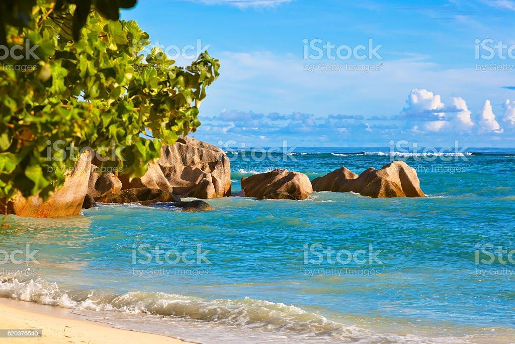 Praia Tropical em Seychelles Source D'Argent foto de stock royalty-free