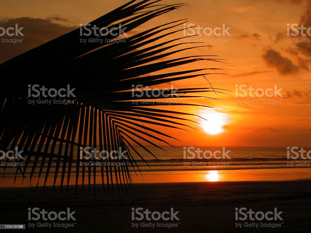 Tropical Beach Sunset and Palm Trees, Jaco, Costa Rica stock photo