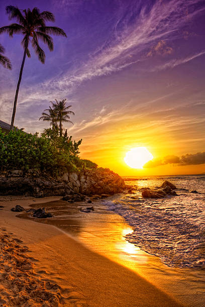 a tropical beach sunset on a beautiful day  - idyllisch stockfoto's en -beelden