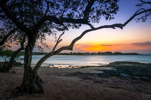 Tropical Beach Sunset stock photo