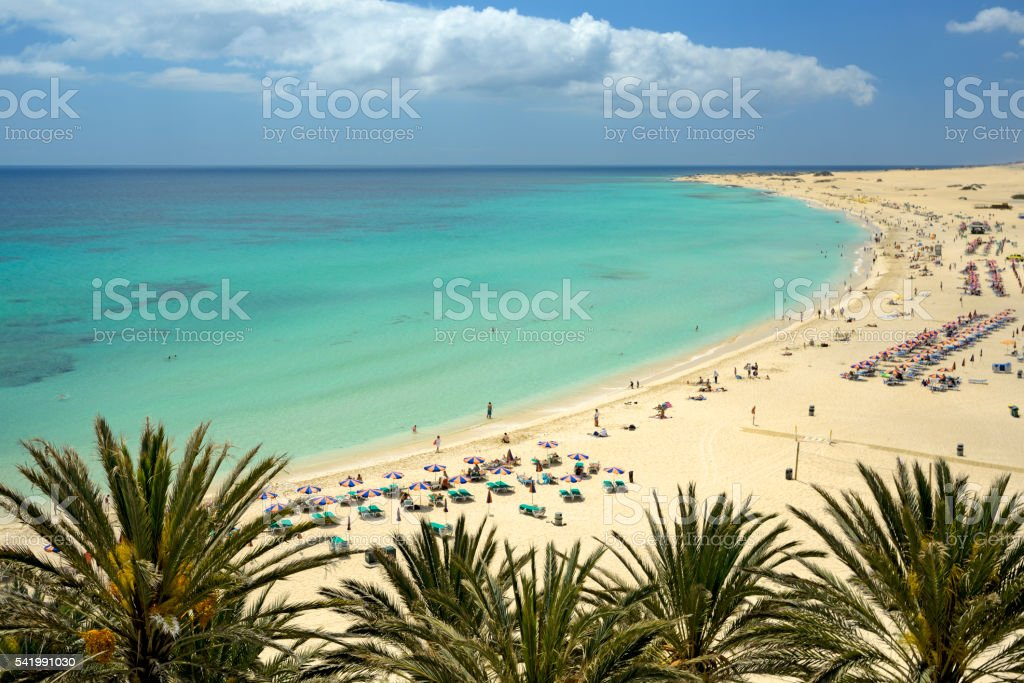 Tropical beach under blue sky stock photo