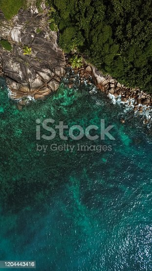 999001484 istock photo Tropical Beach with in Seychelles and Palm trees 1204443416