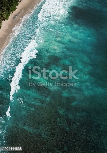 999001484 istock photo Tropical Beach with lagoon and Palm trees 1204444638