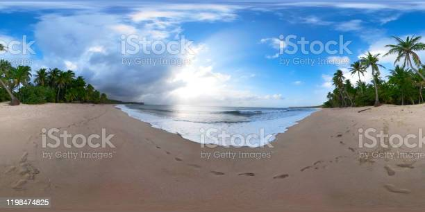 Tropical beach with palm trees 360 vr picture id1198474825?b=1&k=6&m=1198474825&s=612x612&h=o 5ggkdyz8v1wdvqbh3qcvljf3gcoeyatjwev0ovhk4=