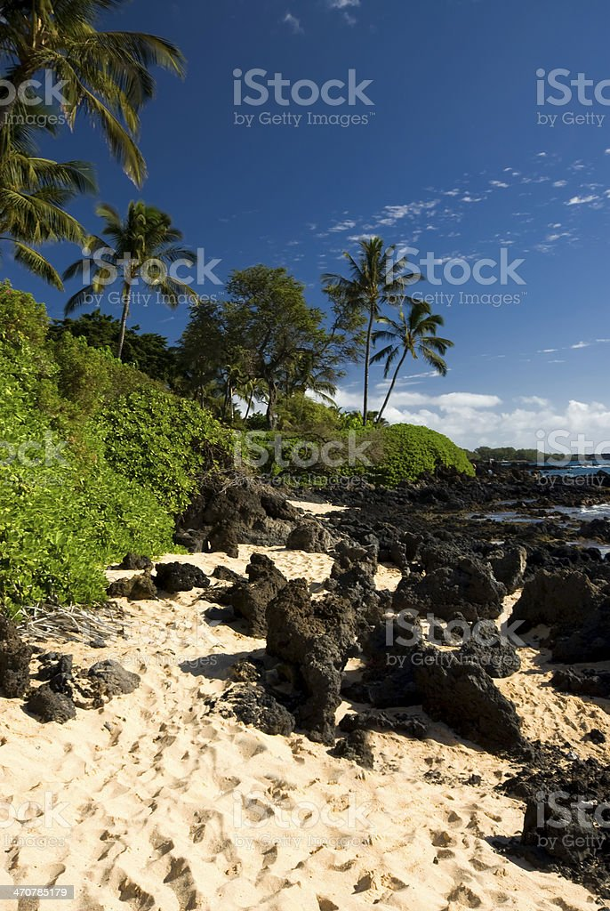 Tropical beach with palm trees, golden sand and volcanic rock royalty-free stock photo