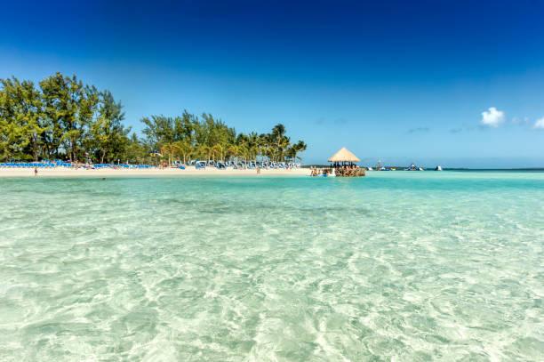 tropisch strand met turquoise water. caraïben - aruba stockfoto's en -beelden