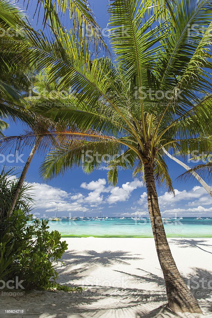 Tropical beach with white sand royalty-free stock photo