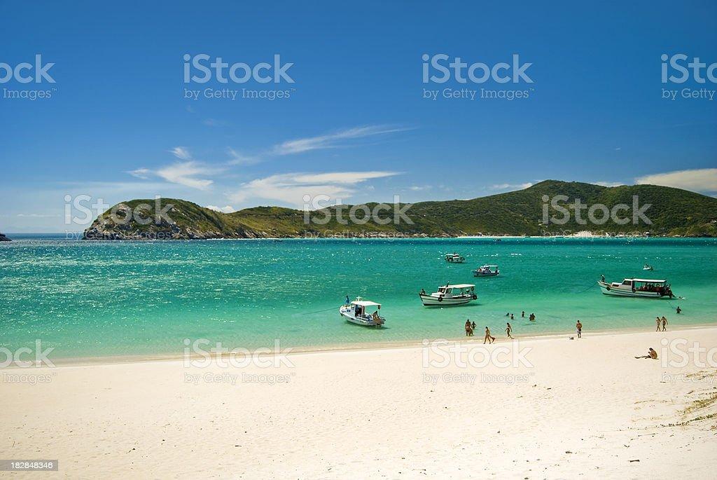 Tropical praia brasileira - foto de acervo